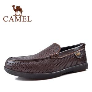 Camel/骆驼 2155342
