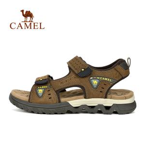 Camel/骆驼 A722309337