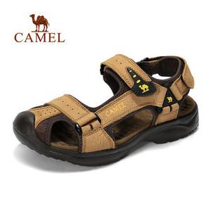 Camel/骆驼 A722309317