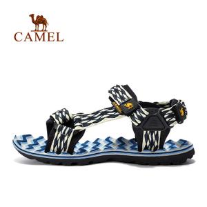 Camel/骆驼 A722162287