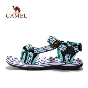 Camel/骆驼 A72162611