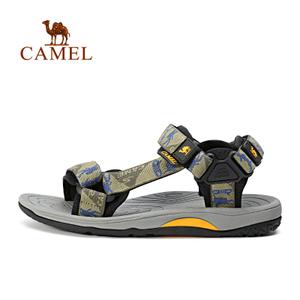 Camel/骆驼 A722162257