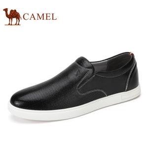 Camel/骆驼 A722266920