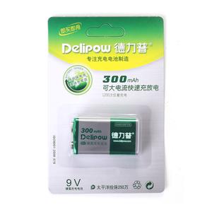 Delipow/德力普 dlp9V300
