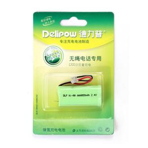 Delipow/德力普 2.4VAAA800