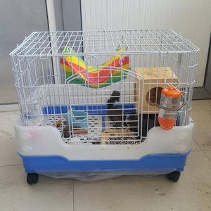 Pets time/派特斯 53cm
