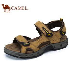 Camel/骆驼 A722344487