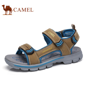 Camel/骆驼 A722396277