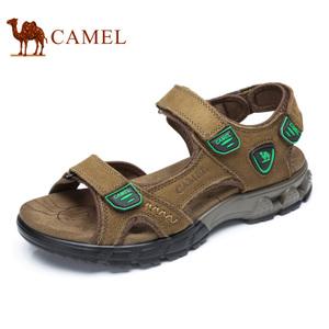 Camel/骆驼 A722307347