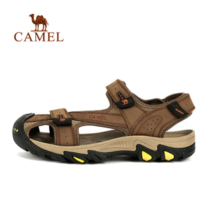 Camel/骆驼 A72309610