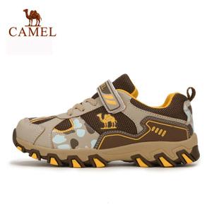 Camel/骆驼 A64320485