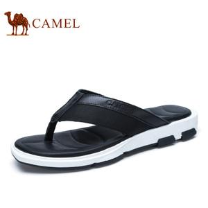 Camel/骆驼 A722299033