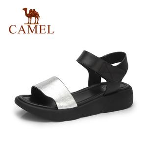 Camel/骆驼 A72879605