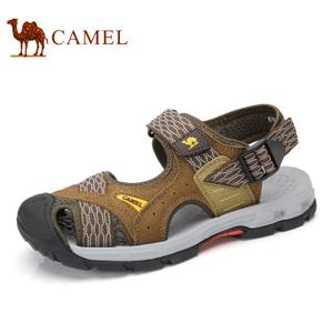 Camel/骆驼 A722396217