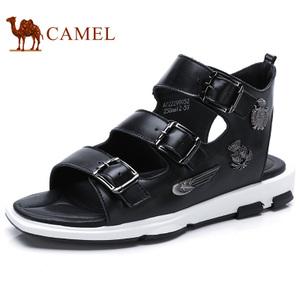 Camel/骆驼 A722299052