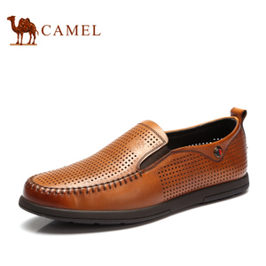 Camel/骆驼 2155339