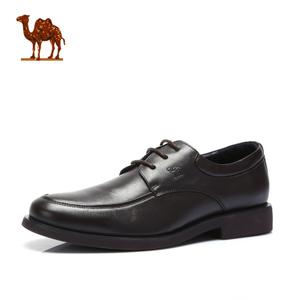 Camel/骆驼 253021051