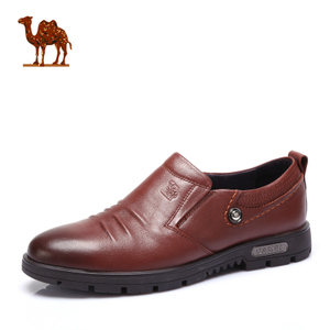 Camel/骆驼 2064059