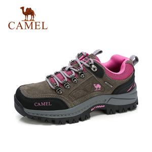 Camel/骆驼 A73149634