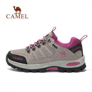 Camel/骆驼 A73303695