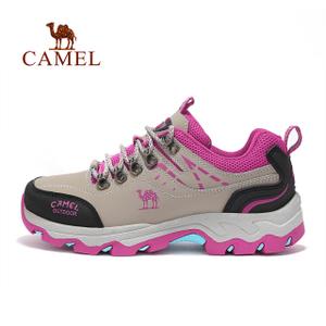 Camel/骆驼 A73330634