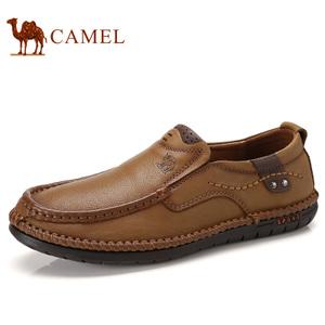 Camel/骆驼 A732344580