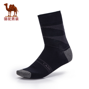 Camel/骆驼 D7S404506