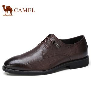 Camel/骆驼 A732033770
