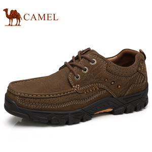 Camel/骆驼 A732344520