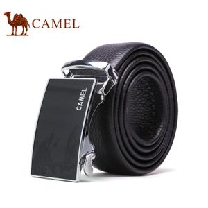 Camel/骆驼 DF193314