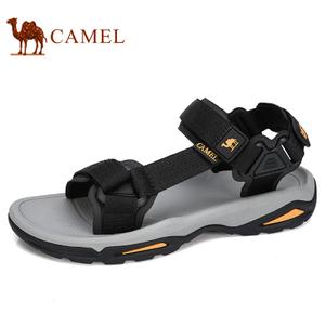Camel/骆驼 A822162412