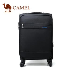 Camel/骆驼 MA218126