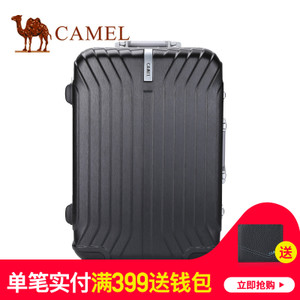 Camel/骆驼 MA218158